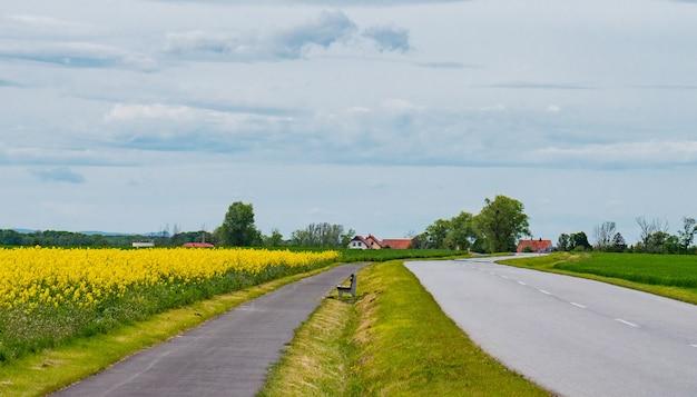 View on roadway to village in silesia, poland