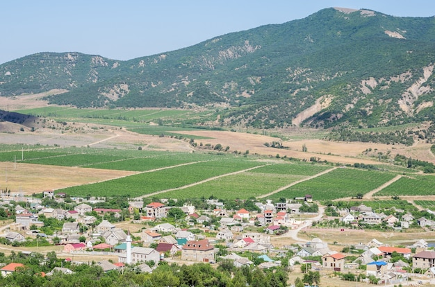 View of a settlement in a mountain valley houses outbuildings vineyards