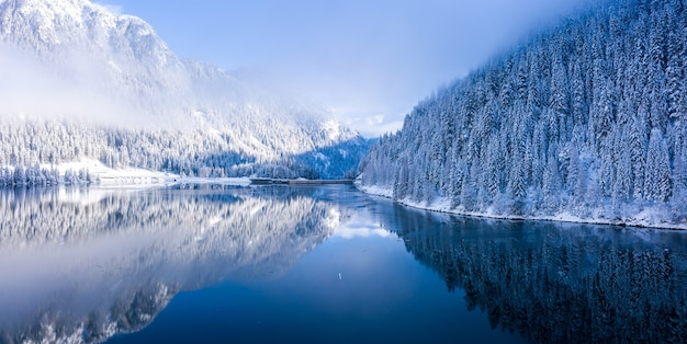 View of snowy mountains filled with trees next to a calm lake during daylight