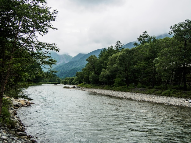 The view of the stream flows down through the forest on the mountain with cloud background at kamikochi japan