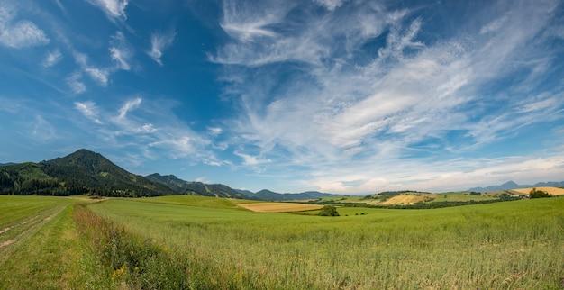 夏のふもとの小丘の景色を眺めるタトラ山脈の休暇