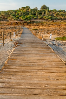 View of a sunset scenic view of a wooden walkway on the beach dunes of the algarve, portugal.
