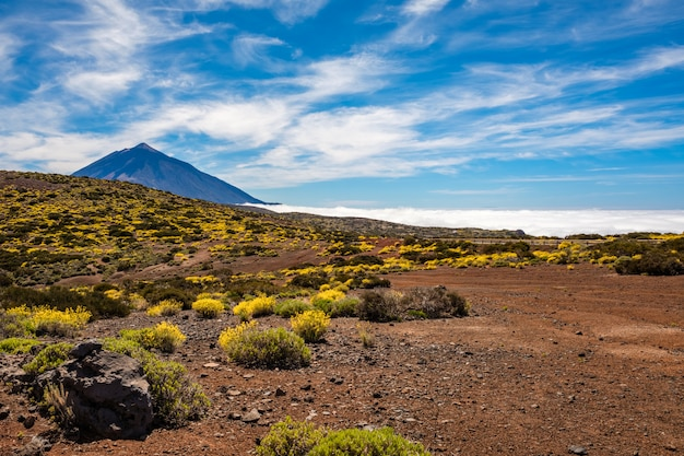 View of the surroundings of the teide astronomical observatory with the teide