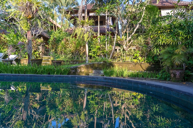 View of the swimming pool in the tropical garden in the morning at sunrise in ubud, bali, indonesia , close up