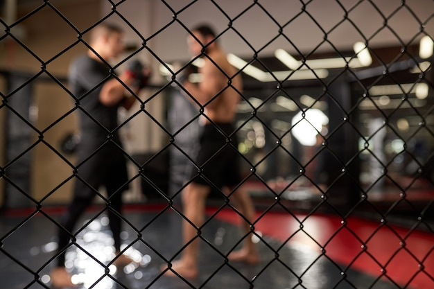 View through cage, two muscular men fighting, bodybuilders punching each other, training in martial arts, boxing, mma concept