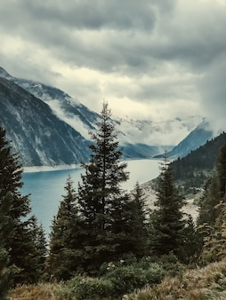 モミの木を通して、雲と霧に覆われた澄んだターコイズブルーの山の湖シュレガイを眺めてください。ツィラータールアルプス、マイヤーホーフェン、オーストリア。
