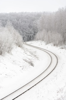 겨울 날 흰 서리로 덮인 흰 숲에 배치 된 철도보기