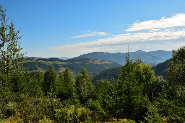 View of the valley from the top on a background of green mountains, blue sky with clouds and trees