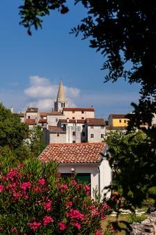 View of villa, bale in istria. croatia