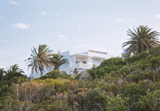 View of the white villa hidden in the greenery