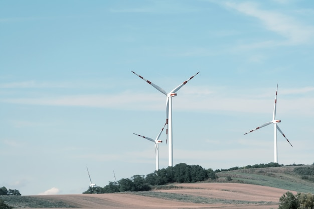 View of a wind power plant on a background of blue sky and fields with grain crops.