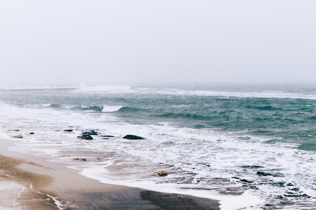 View of a winter beach and the sea during a snowfall and wind, overcast landscape