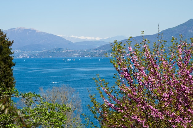 Viewfield with verbania landscape