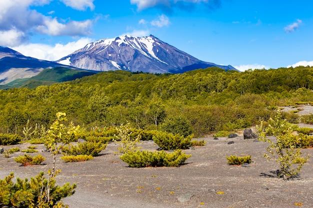 カムチャツカ半島のコゼリスキー火山とアヴァチンスキー火山の麓の景色