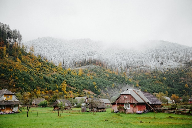 Деревенские дома в лесу с туманом и снегом высоко в горах