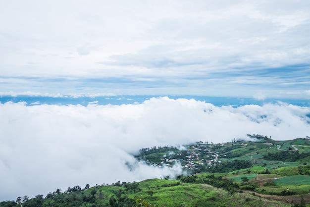 Village in the mist