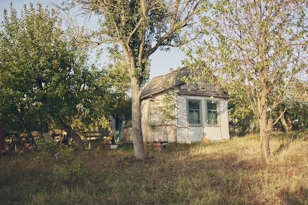 Village small house nature landscape fresh air