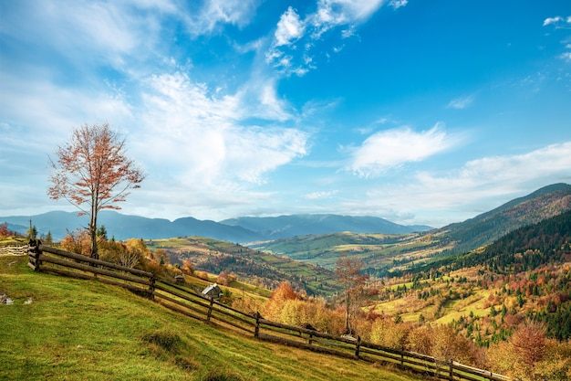 좋은 날씨에 밝은 태양 빛 아래 가을 숲으로 보호되는 언덕 아래 마을