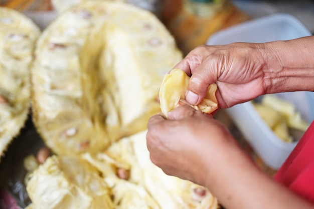 Villagers are using their hands to carve jackfruit, which is a yellow fruit.