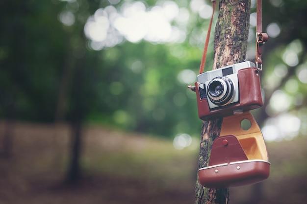 Камера vinatge с blackground природы bokeh.