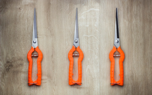Vine grape long nose pruner with orange handles top view from above isolated on wood background