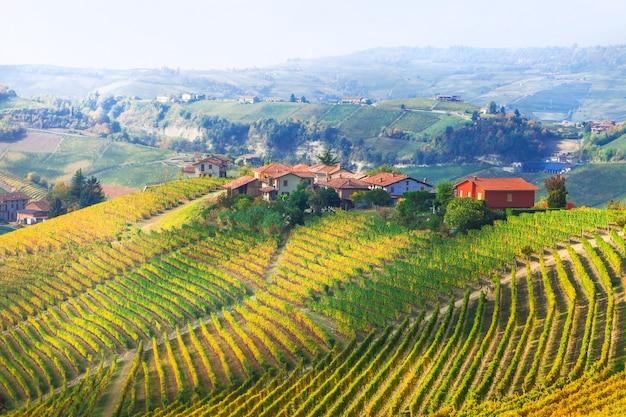 ブドウ園の風景-イタリア、ピエモンテの絵画の小さな村