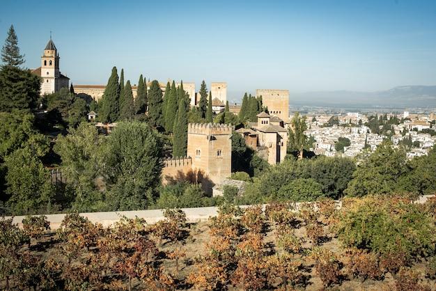 Виноградники сада альгамбры в гранаде испания