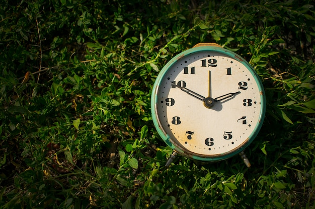 Vintage alarm clock on a background of green grass.