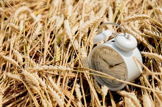 麦畑のヴィンテージ目覚まし時計