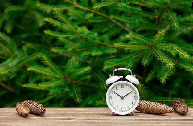Vintage alarm clock and pine cones around on wooden table with spruce branches on background