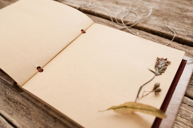 Vintage album with dry pressed flower