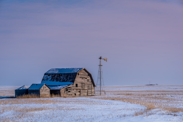 Vintage barn, bins and windmill surrounded by snow under a pink sunset sky in saskatchewan, canada