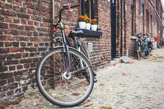 Vintage bicycle in front of old brick wall