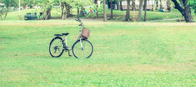 Vintage bicycle on green grass at public park in bangkok, thailand. baner background