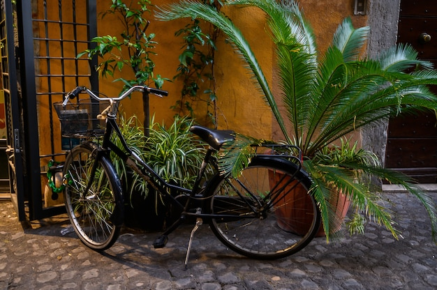 Vintage bicycle parked on a cobblestone street