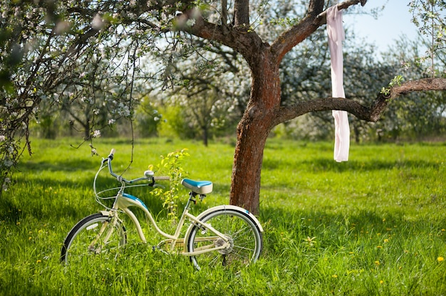 Vintage bicycle standing in the fresh green grass under flowering tree