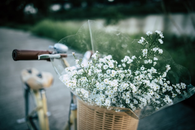 Vintage bicycle with basket and flowers in the par