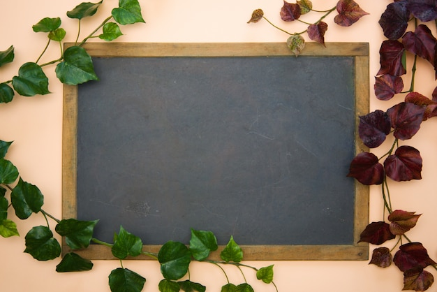 Vintage blackboard with wooden frame with vines plants