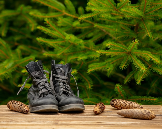 Vintage boots and pine cones around on wooden table with spruce branches on background