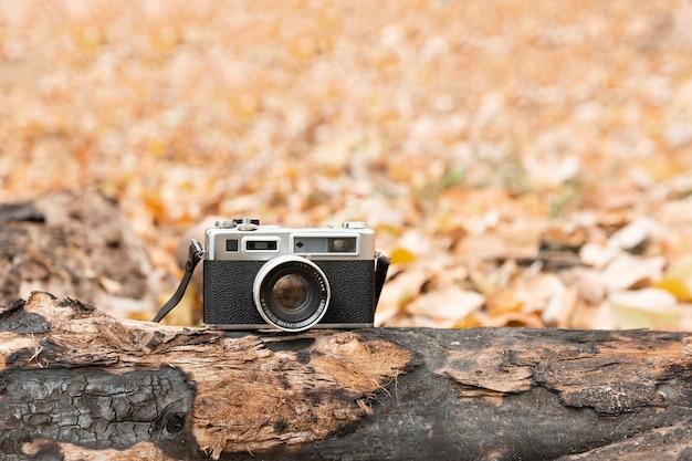 가을 시즌에 낙엽으로 둘러싸인 나무 줄기에 쉬고 빈티지 카메라. 텍스트를위한 공간.