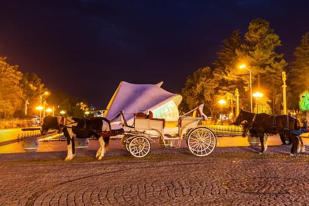 Vintage carriage, batumi
