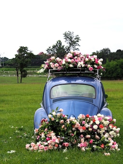 Vintage cars decorated with flowers on the grass fields.