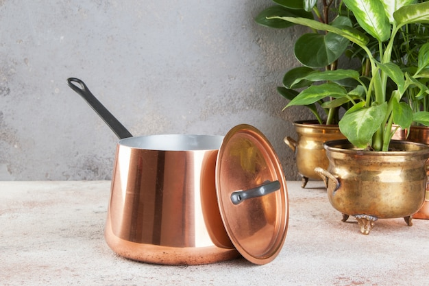 Vintage copper casserole and green plants