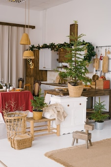 Vintage dining room, decorated for christmas and new year. lots of potted christmas trees in the kitchen