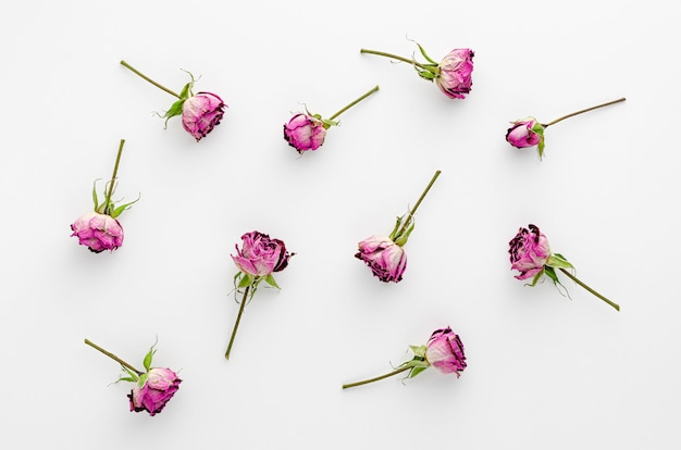 白地に乾燥したバラで作られたヴィンテージの花。平置き