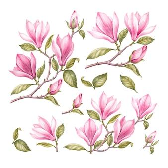 Vintage garland of blooming sakura.