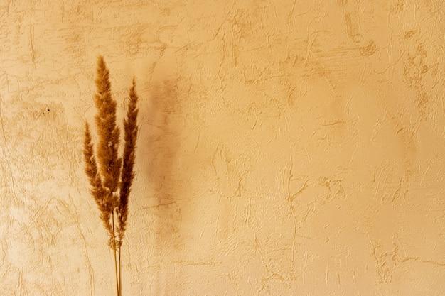 구호 장식과 말린 잔디가 있는 빈티지 유리 꽃병. 트렌디한 인테리어 장식. 창틀과 얇은 명주 그물 커튼에 강한 햇빛. 말린 푹신한 식물이 있는 아늑한 집.