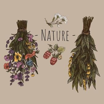 Винтажная зеленая цветочная открытка ведьмы. иллюстрация колдовства сухих цветов. лесные сокровища