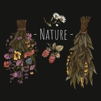 ヴィンテージ緑の魔女の花のグリーティングカード。ドライフラワー魔術植物画。黒の背景に分離された森の宝物。