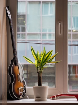 Vintage guitar for game console, plant and red ukulele on a windowsill on a rainy day outside the window